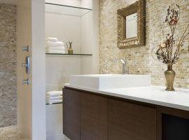 contemporary-bathroom(1)